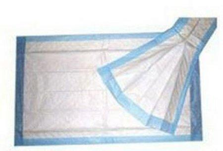 Underpad Passport Deluxe 28 X 36 Inch Disposable Polymer Moderate Absorbency 1340 BG/10